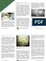 diagnostico-web-.pdf