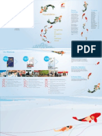 Xpress Holdings Annual Report 2008