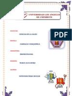 Metabolismo Del Colesterol if Bromatologia 2013