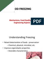 Food Freezing (2009)