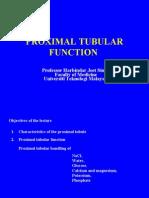 3. Tubular Function (Proximal Tubule)