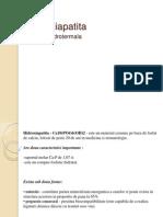 Hidroxiapatita-sinteza hidrotermala