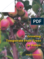Growing Temperate Fruit Trees in Kenya