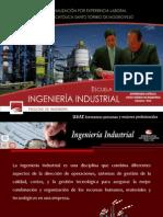 VIII Programa de Profesionalización - Ing. Industrial
