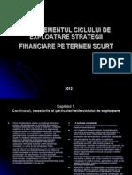 Managementul Ciclului de Exploatare Strategii Financiare Pe Termen