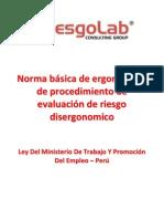 Norma Basica Ergonomia - Peru.pdf