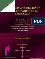 Enfermedades del riñón y las vías urinarias en el embarazo