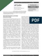 biogeochemical cycles.pdf