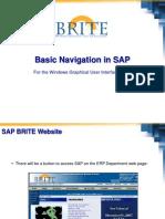 Basic Navigation in SAP Windows