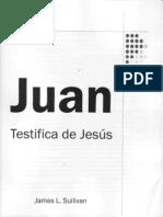 James L Sullivan - Juan Testifica de Jesus
