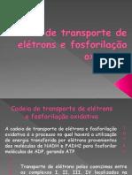 GRUPO 2 - FOSFORILAÇAO OXIDATIVA SLIDE