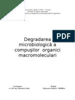 Degradarea microbiologică a compuşilor