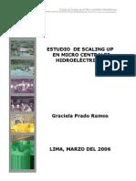 Estudio de Scaling Up Micro Centrales1