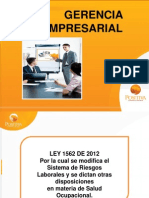 Gerencia Empresarial- Ley 1562 de 2012