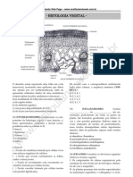 Histologia Vegetal NoPW