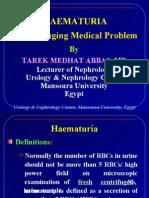 Haematuria a Challanging Medical Problem.mansfans.com