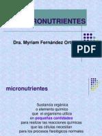 micronutrientes-090724113524-phpapp01