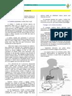 farmacos antiprotozoarios