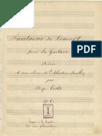 Napoleon Coste - Fantaisie de Concert
