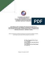 Tesis 1 - Desarrollo de un modelo de negocio basado en un enfoque sistémico.pdf
