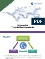 Trade Bridge Consultants