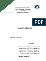 Terapia Breve Sistémica PDF