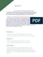 Int. Teorica Auxiliar