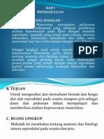 Anatomi Dan Fisiologi Sistem Reproduksi