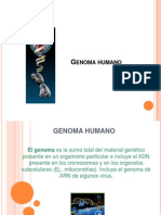 SEMANA Nº 6 PARADIGMA DEL GENOMA HUMANO  MENTE CEREBRO