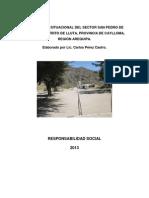 DIAGNÓSTICO SITUACIONAL DEL SECTOR SAN PEDRO DE QUERQUE - AREQUIPA.docx
