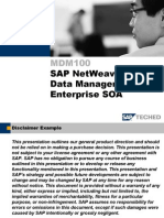 Sapnw7.0 Mdm&Enterprisesoa 2007