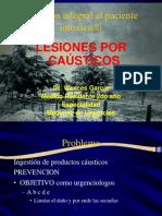 Causticos Presentacion Dr Wences Final
