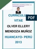 Curriculum Vitae Actualizado Olver 2013