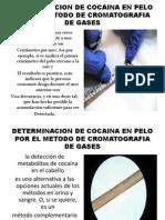 Determinacion de Cocaina en Pelo Power Point