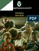Buku Seri Etnografi Kesehatan Ibu dan Anak 2012; Etnik Ngalum, Distrik Oksibil, Kabupaten Pegunungan Bintang, Provinsi Papua