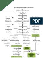 Patofisiologi PJR