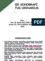 USG Traktus Urinarius