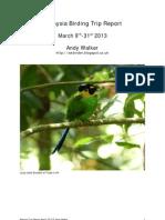 Malaysia Birding Trip Report