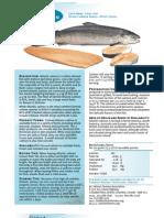 Atlantic Salmon Set