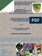 Microorganismos utilizados en Biotecnología.pptx
