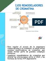 COMPLEJOS REMODELADORES DE CROMATINA - LEYDI.pptx
