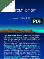 Abdominal Cavity One