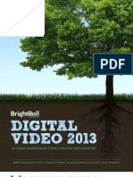 Digital Optimization Video 2013