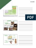 ARTROPODI_d3.pdf