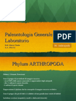 Lab06.Arthropoda.pdf