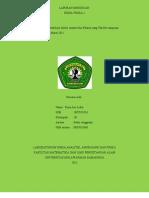 96394291-laporan-distribusi-solute.pdf