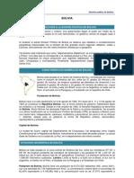 Division Politica de Bolivia