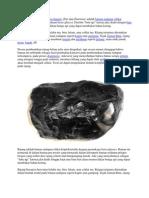 Rijang Atau Batu API