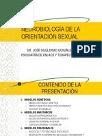 Neurobiología de la homosexualidad