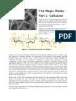 The Magic Media-Part 1-Cellulose